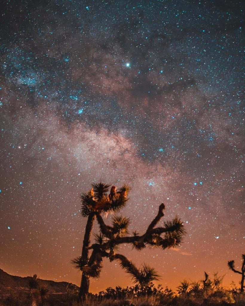 """""""Hanging out with my friends and chasing the Milky Way at Joshua Tree National P..."""