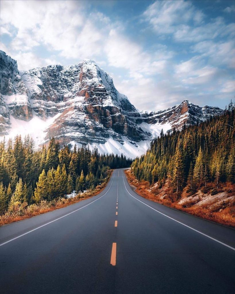 What a stunning road in Alberta. Tag your Roadtrip Buddy in the comments!  Photo...