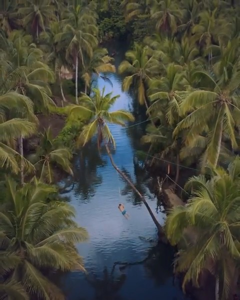 Video by @merrwatson Tucked away in the beautiful island of Siargao is this icon...