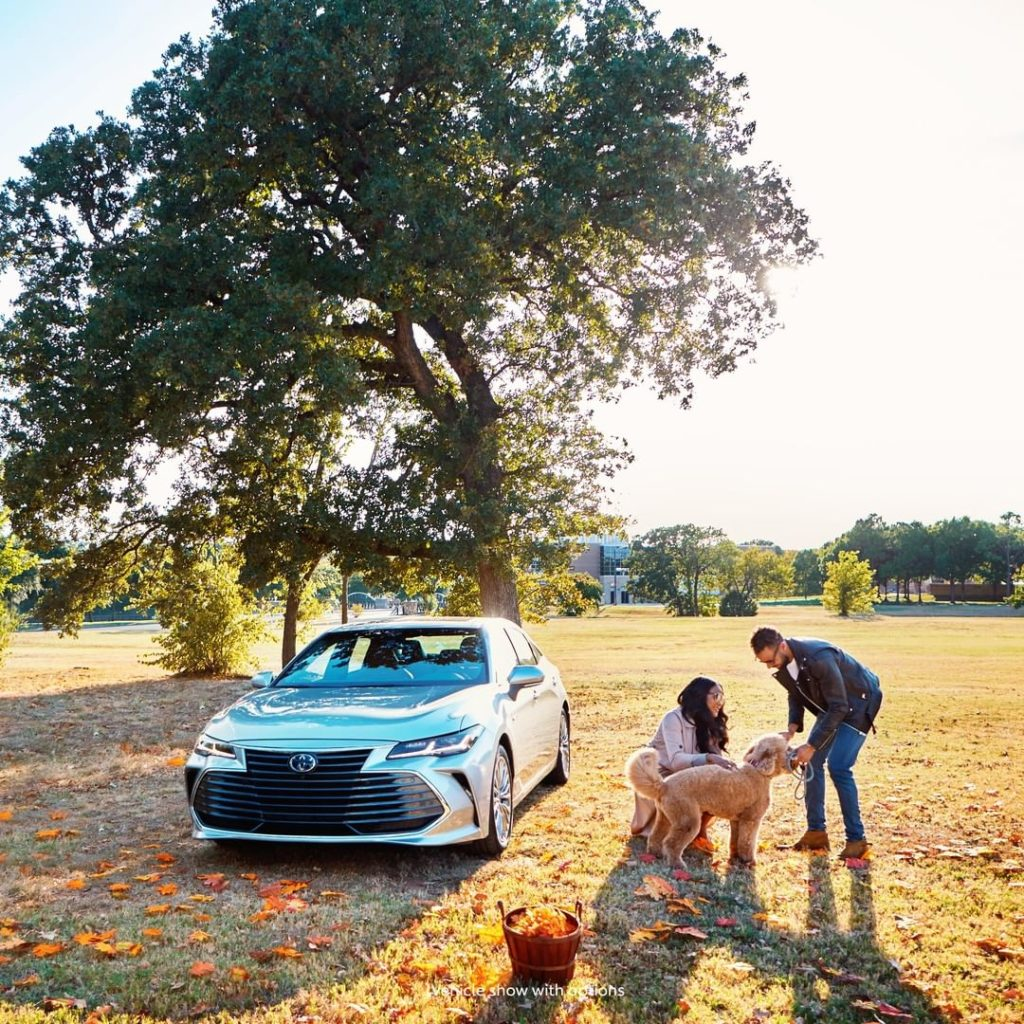 Be surrounded by a purposeful design #Avalon #Hybrid #LetsGoPlaces...