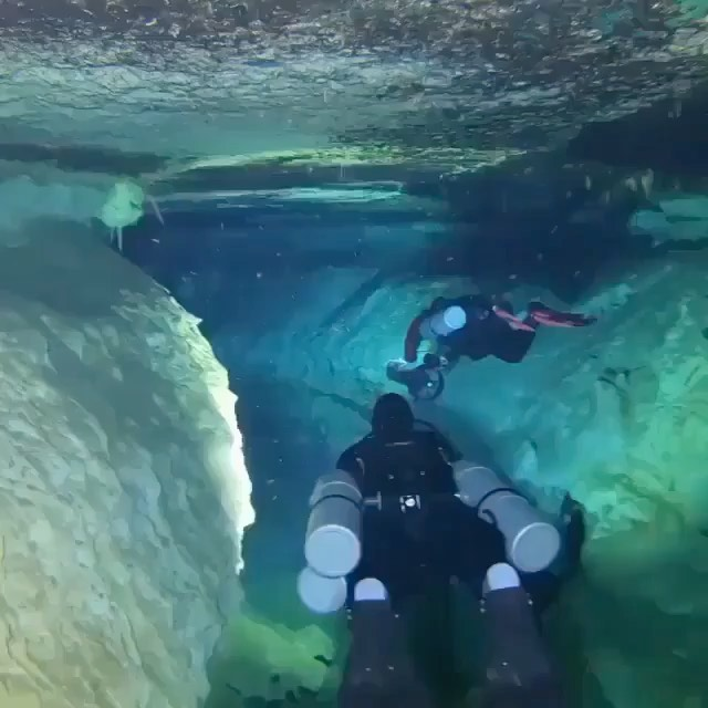 Underwater caves of Tulum.  Videography | @ducatista66 Curated by @steffeneisena...